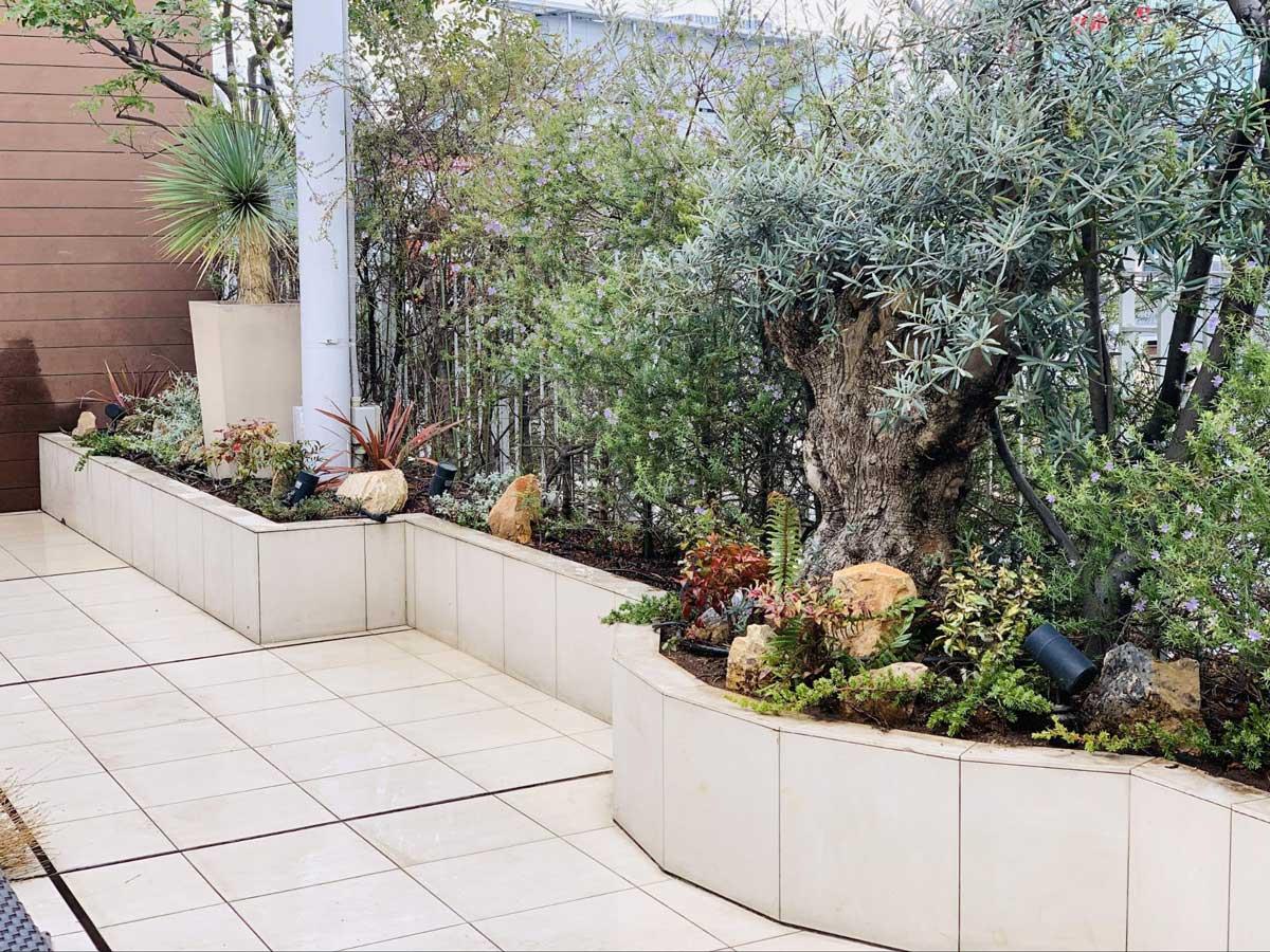 ビアガーデンの花壇