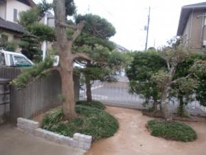 千葉市中央区の造園1