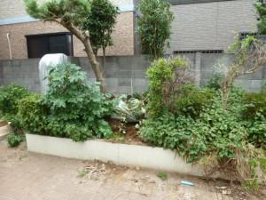 東京都江戸川区リガーデン