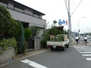 千葉県幕張町、剪定工事
