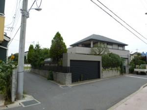 千葉県幕張町剪定工事