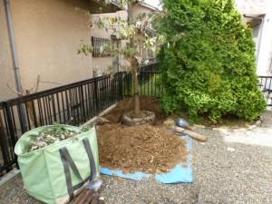 千葉県八千代市ユーカリが丘造園工事リガーデン