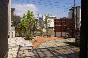 石畳,石の庭